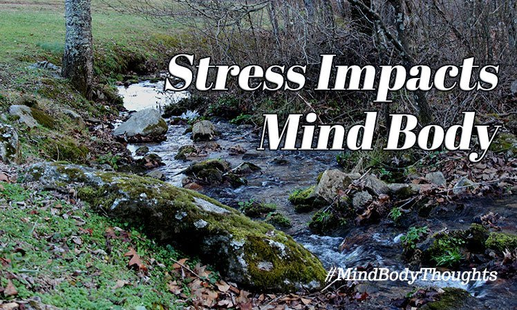 Stress Impacts The Mind Body