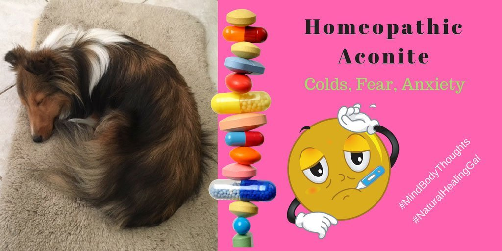Homeopathy Aconite For Colds, Fear And Anxiety