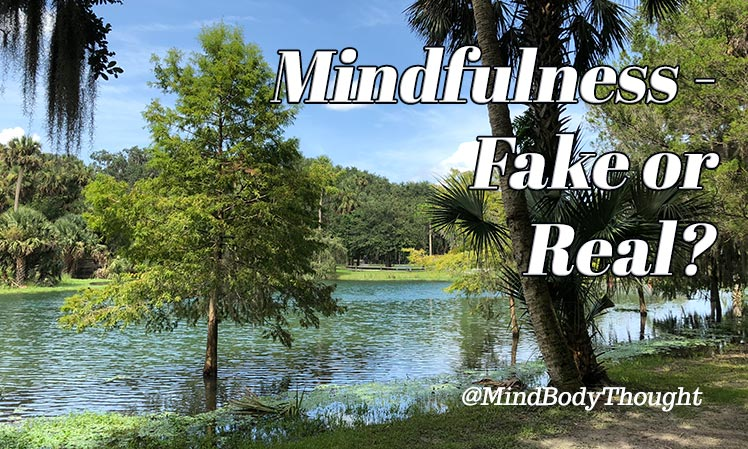 Is Mindfulness Fake Or Real
