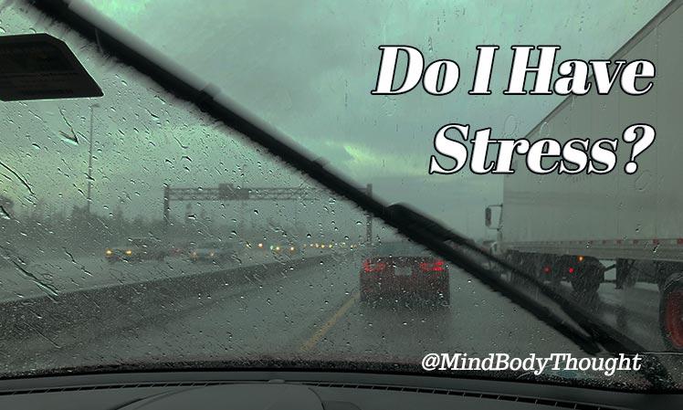 Do I Have Stress?