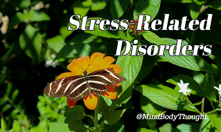 Stress Related Disorder Discover In The Mind Body