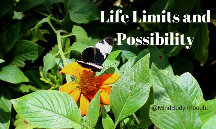 Life Limits and Possibility