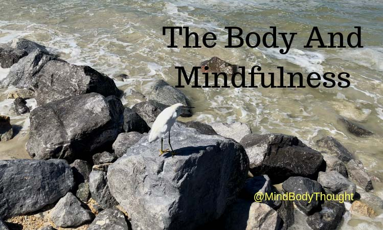 Secrets Of The Body And Mindfulness